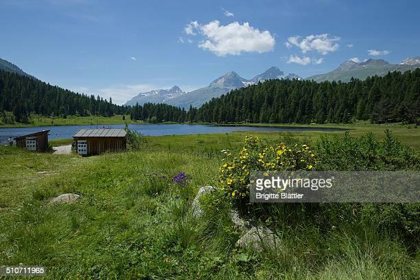 Lej da Staz, Engadin, Switzerland