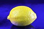 Lemon fruit on a blue background (Citrus × limon)