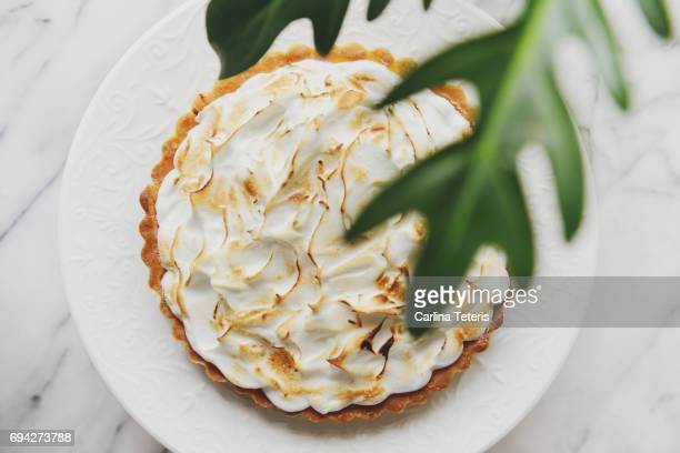 Lemon meringue pie with greenery