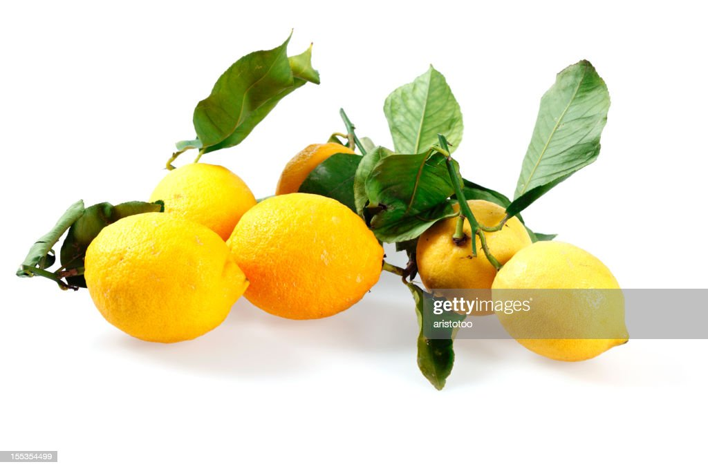 Lemon with Leaves on White Background : Stock Photo