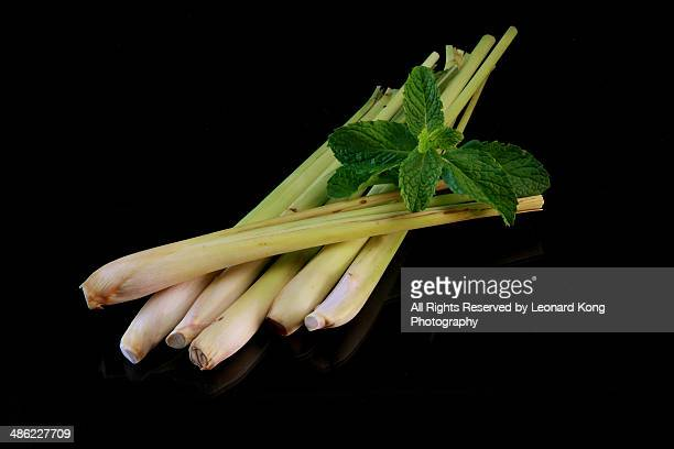 Lemongrass and Peppermint