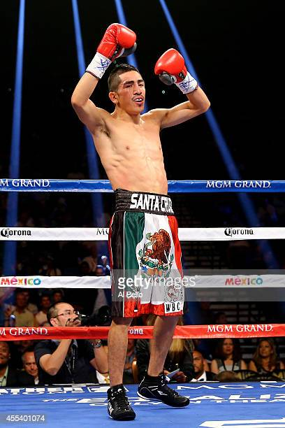 Leo Santa Cruz celebrates after a second round knockout of Manuel Roman during their WBC super bantamweight title fight at the MGM Grand Garden Arena...