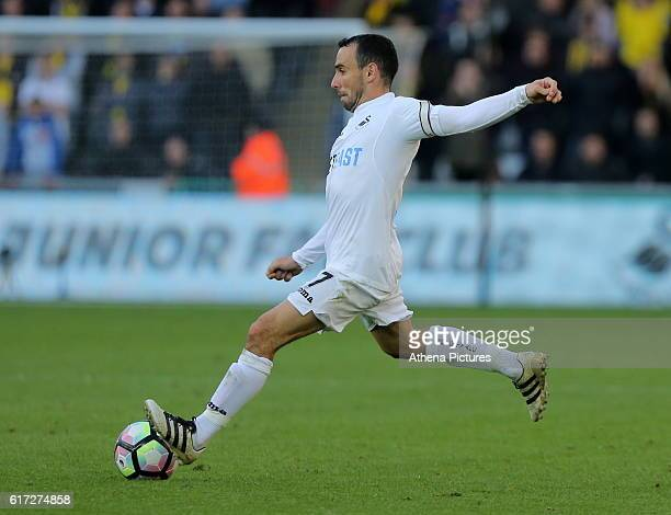 Leon Britton of Swansea City in action during the Premier League match between Swansea City and Watford at The Liberty Stadium on October 22 2016 in...