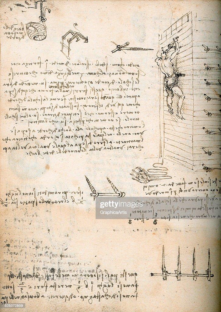 essays leonardo da vinci Essays on leonardo da vinci we have found leonardo da vinci question who is leonardo da vinci leonardo: i am a renaissance artist, a painter born in italy in 1452.
