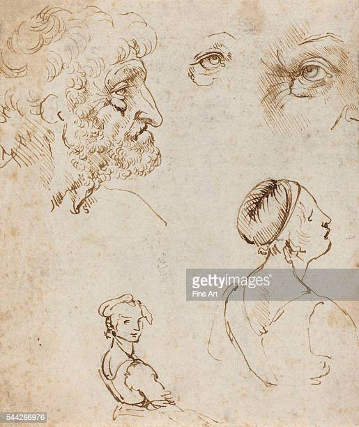 Leonardo da Vinci Sheet of Studies [recto] c 147080 pen and brown ink over black chalk on laid paper 164 x 139 cm National Gallery of Art Washington...