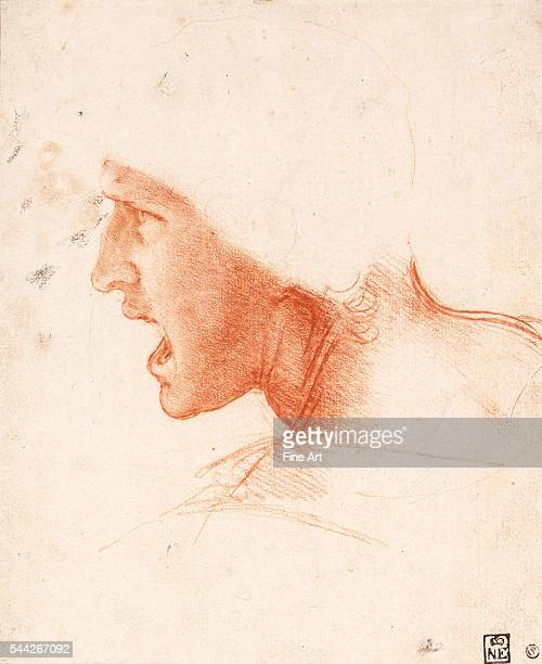 Leonardo da Vinci Study of a Warrior's Head for the Battle of Anghiari 15045 red chalk on pink paper 226 x 186 cm Budapest Museum of Fine Arts