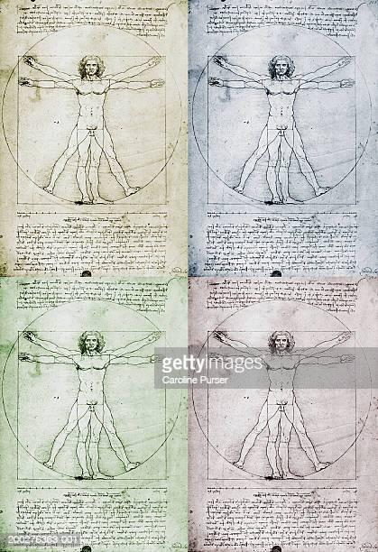 Leonardo Da Vinci's Vitruvian Man (montage)
