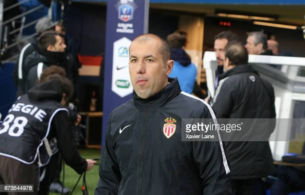 Leonardo Jardim of AS Monaco during the French Cup SemiFinal match between Paris SaintGermain and As Monaco at Parc des Princes on April 26 2017 in...