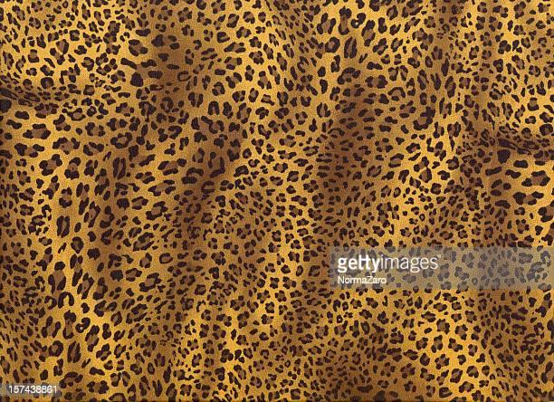 Leopard Backgroud