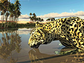 Leopard in the lake