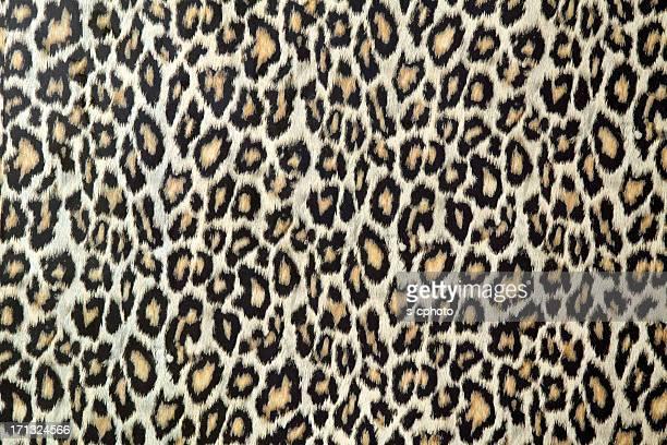 Texture de peau de léopard (Cliquez pour en savoir plus)