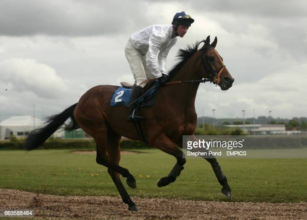 Lepido ridden by Philip Hide going to post for the Rose Lion In Bromyard Novices' Handicap Hurdle