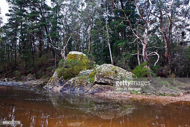 Lerderderg River, Blackwood, Victoria