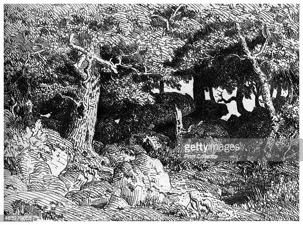 'Les Chenes de Roche' c1832 1860 A print from A History of French Etching from the 16th Century to the Present Day by F L Leipnik John Lane the...