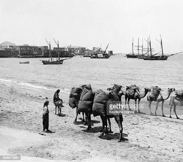 Les ruines de Saïda ancienne ville de Sidon en Phénicie au Liban le 29 août 1931