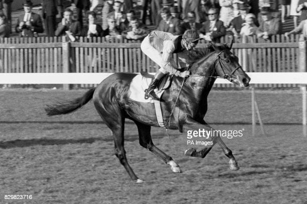 Lester Piggott riding Nijinsky to victory in the Dewhurst Stakes at Newmarket Piggott announced his final retirement from raceriding The 11times...