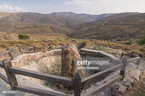 Lesvos Petrified Forest : Stock Photo