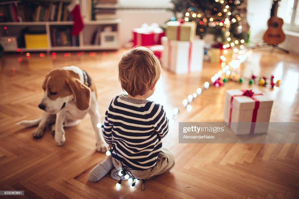 Laissez la décoration pour Noël : Photo