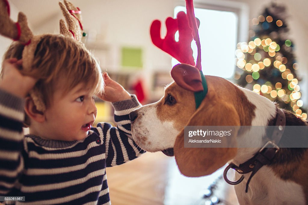 Let's help to Santa Clause! : Stock Photo