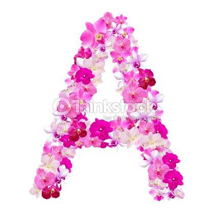 lettre a des fleurs dorchid es isol sur blanc photo thinkstock. Black Bedroom Furniture Sets. Home Design Ideas