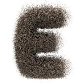 Letter E from fur alphabet