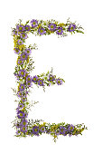 Letter E In A Purple And White Flower Font