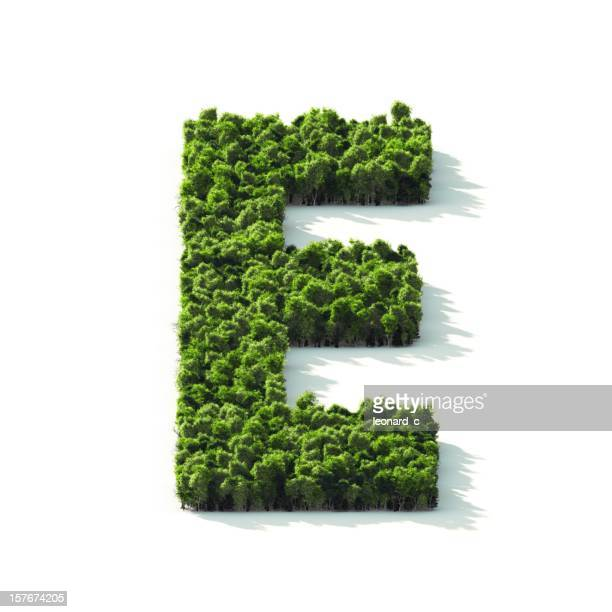 Letter E : Perspective View