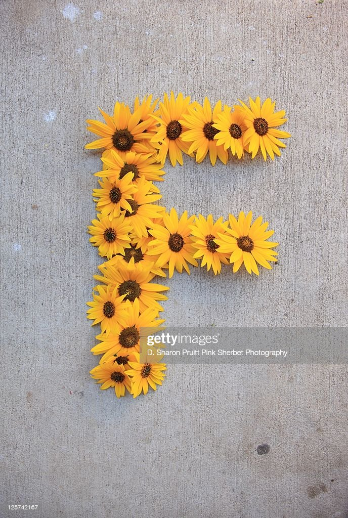 Letter F made of flowers