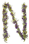 Letter N In A Purple And White Flower Font