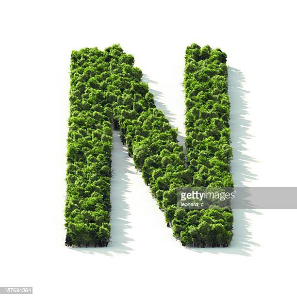 Letter N : Perspective View