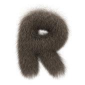 Letter R from fur alphabet