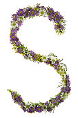 Letter S In A Purple And White Flower Font