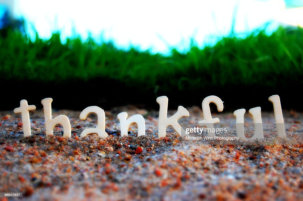 Letters spelling thankful : Stock Photo