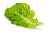 A lettuce leaf salad