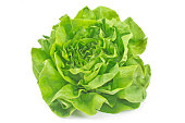 Lettuce vegetable isolated on white background.