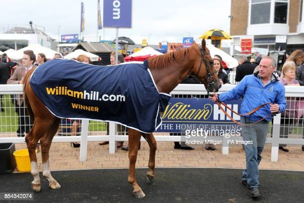 Levitate in the winners enclosure after winning the William Hill iPhone iPad iPad Mini Ayrshire Handicap stakes