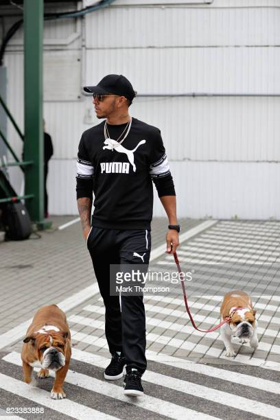 Lewis Hamilton of Great Britain and Mercedes GP arrives at the circuit with dogs Roscoe and Coco during previews ahead of the Formula One Grand Prix...