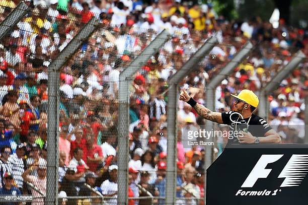 Lewis Hamilton of Great Britain and Mercedes GP waves hands to the fans during drivers' parade prior to the Formula One Grand Prix of Brazil at...