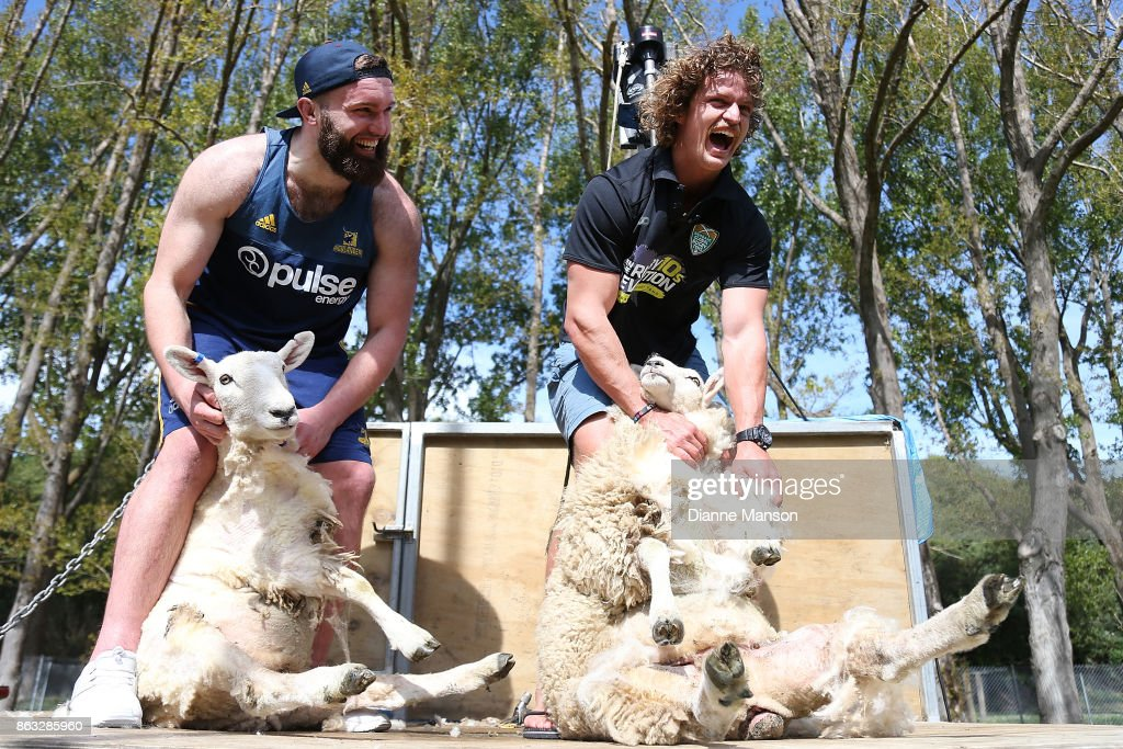 New Zealand Rugby Stars Go Head To Head In Sheep Shearing Contest