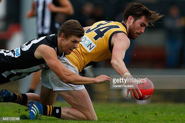 Liam McBean of the Tigers and Adam Oxley of the Magpies compete for the ball during the round 12 VFL match between the Collingwood Magpies and the...