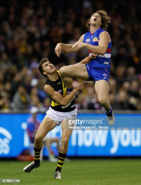 Liam Picken of the Bulldogs attempts to mark over Oleg Markov of the Tigers during the 2017 AFL round 07 match between the Western Bulldogs and the...
