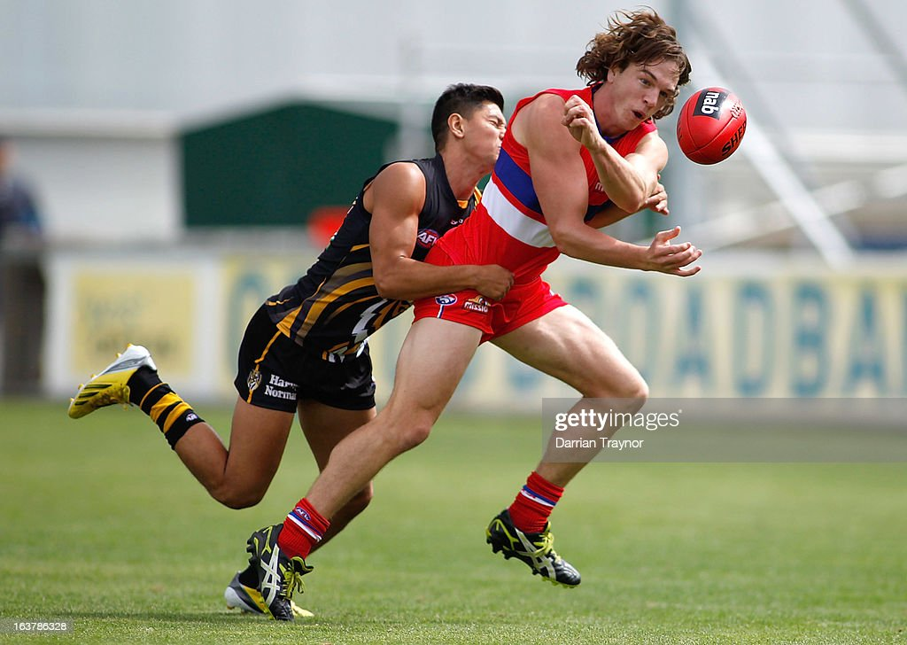 Liam Picken of the Bulldogs handballs the ball during the AFL practice match between the Richmond Tigers and the Western Bulldogs at Visy Park on March 16, 2013 in Melbourne, Australia.