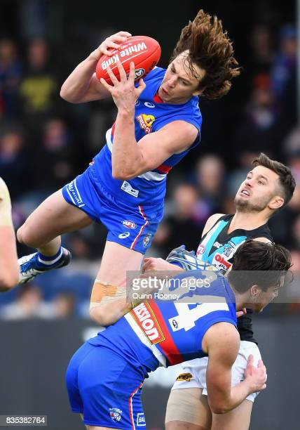 Liam Picken of the Bulldogs marks over the top of Bailey Williams of the Bulldogs and Sam Gray of the Power during the round 22 AFL match between the...