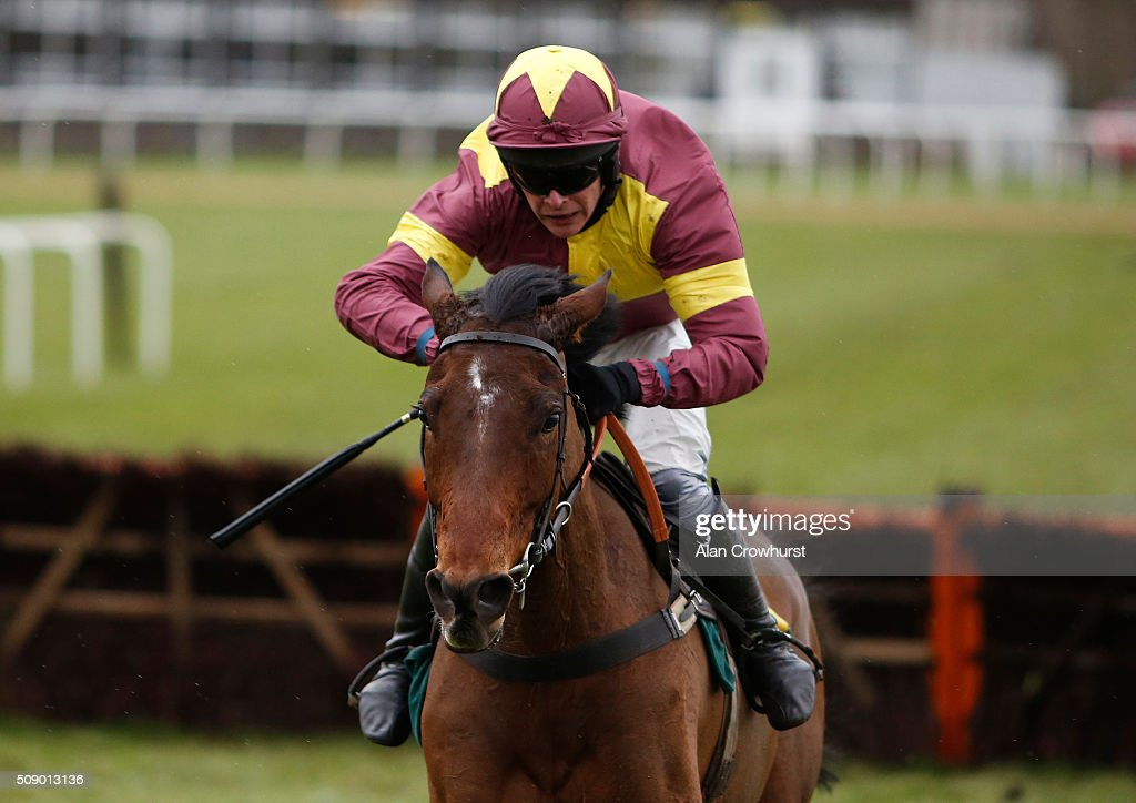 Liam Treadwell riding Prince Of Steal clear the last to win The Racing To School Are Here Today 'National Hunt' Novices' Hurdle Race at Fakenham racecourse on February 08, 2016 in Fakenham, England.