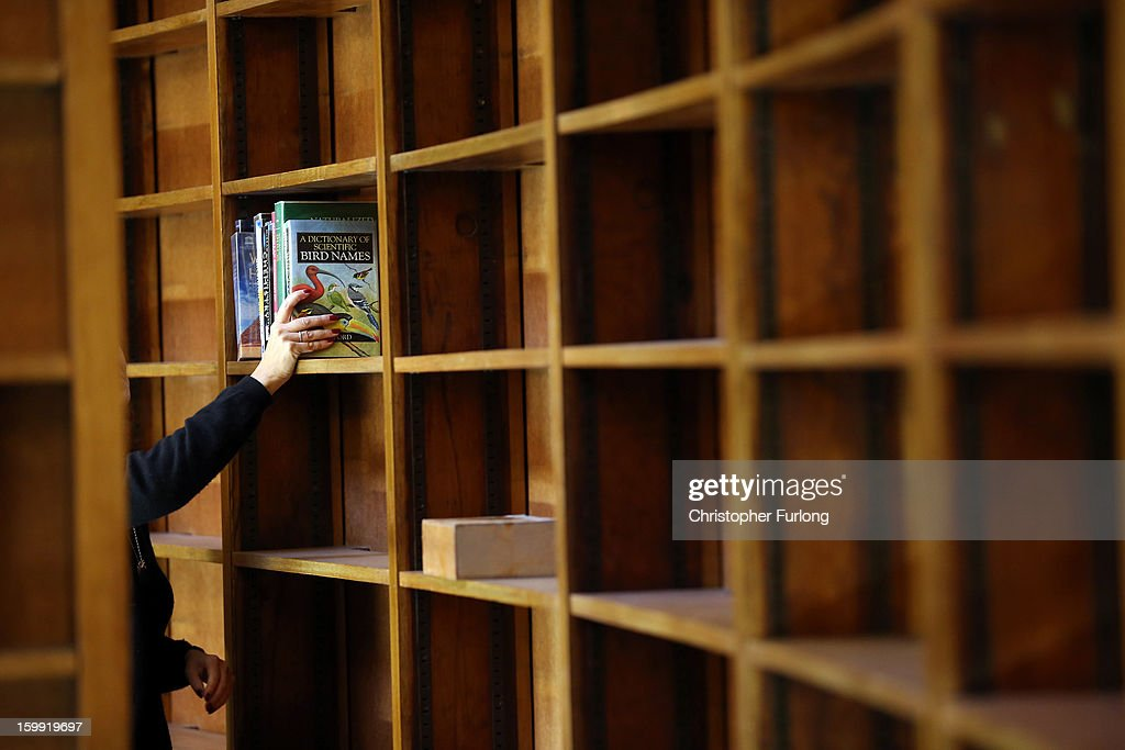 Librarian Ruth Grodner begins the task of restocking books in the restored Picton Reading Room in Liverpool Central Library on January 23, 2013 in Liverpool, England. After ten years of planning and over two years of restoration, Liverpool's Central Library is near completion for it's official opening in May. Over four millions items, including documents and books, are now to be rehoused in the library which has cost GBP 55 million.