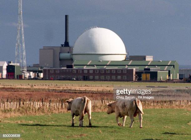 Library file 2654585 dated 260996 of Aea Nuclear Reprocessing Plant at Dounreay Scotland Uranium and spent nuclear fuel are being taken to Dounreay...