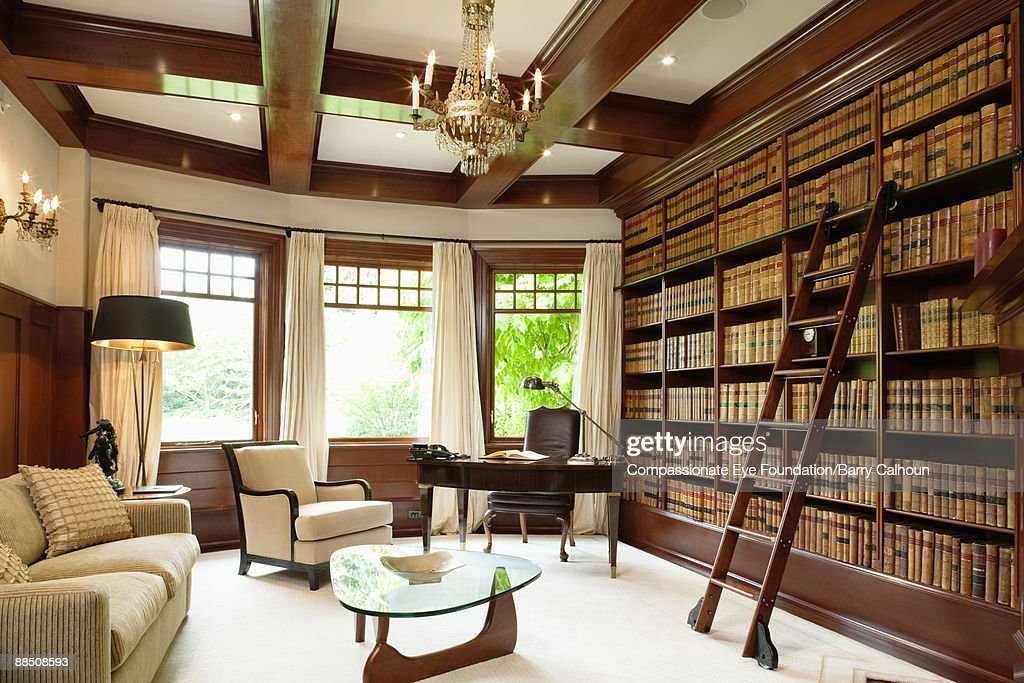 library with rolling ladder and windows to outside : Stock Photo