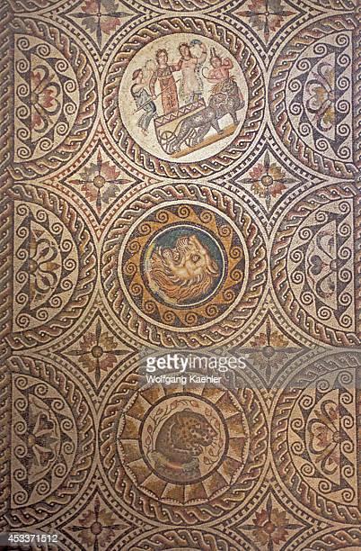 Libya Near Tripoli Sabratha The Roman Museum Mosaic Detail