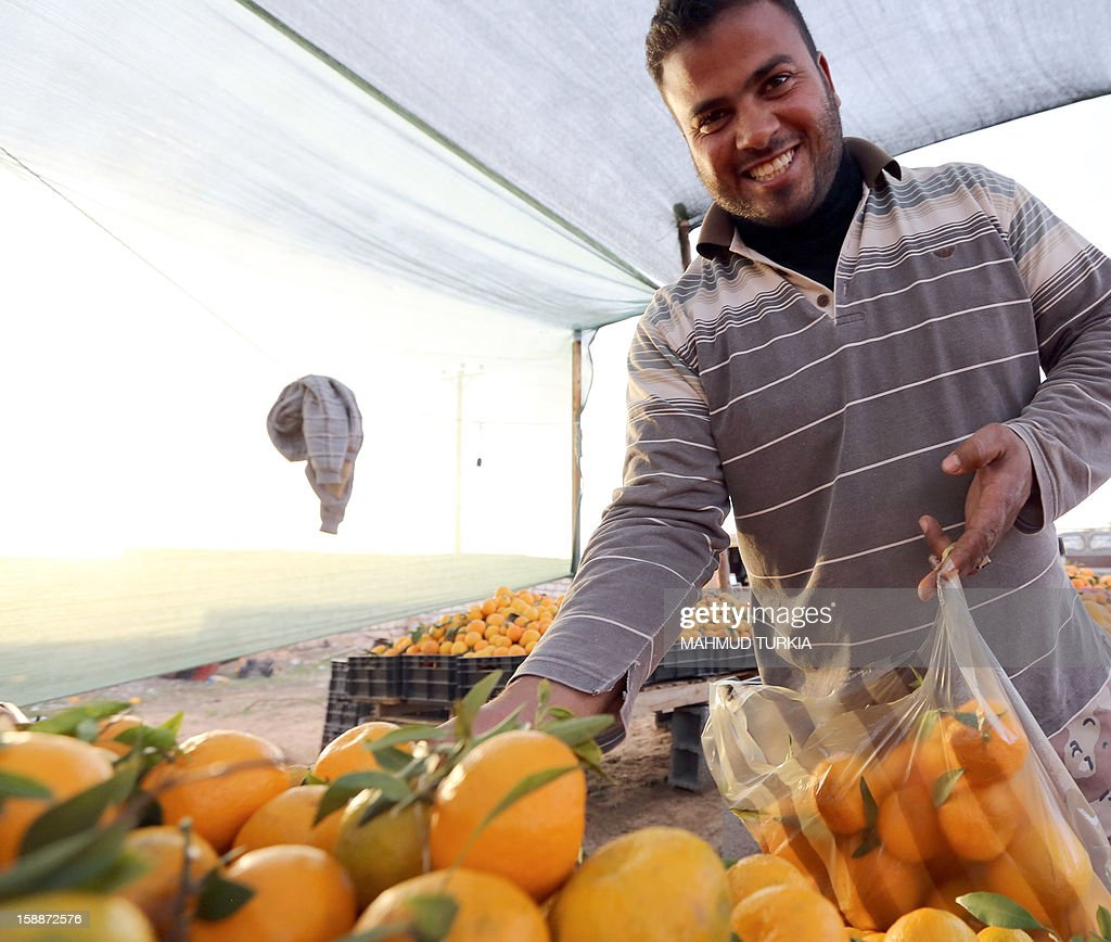 A Libyan customer holds a plastic bag as he chooses oranges from a stall set-up on the side of a main road in the Libyan capital Tripoli, on January 2, 2013. The winter months in Libya is when oranges are in season.