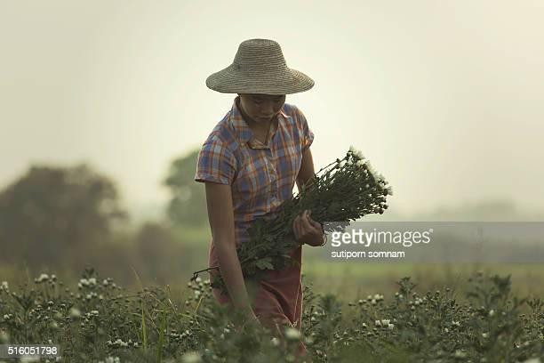 Life of U Bein Myanmar.